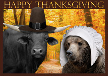 Annual Pilgrimage Thanksgiving Cards